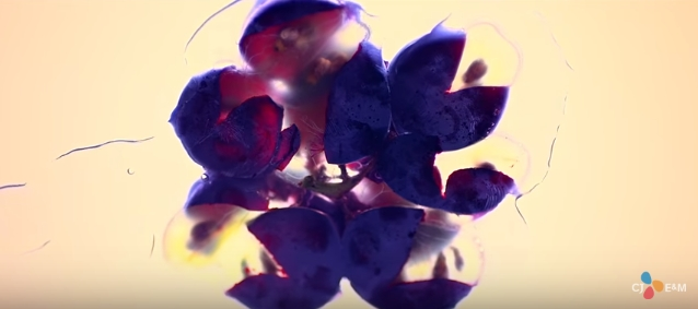 mamamoo_fruit